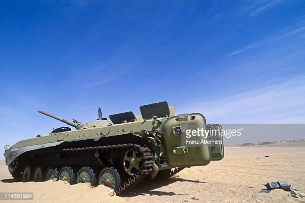 War in the desert, Sahara