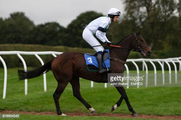 War Party ridden by Tom Weston going to post for the Betfair iPhone Android App Handicap Chase