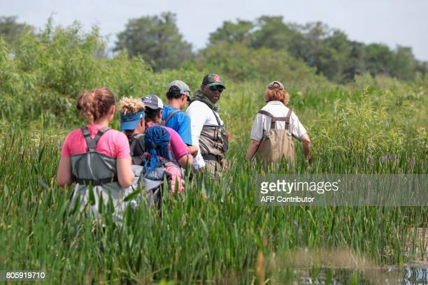 War veteran Chad Brown walks in a river during a training with a Soul River group at the Arthur R Marshall Loxahatchee National Wildlife Refugee in...