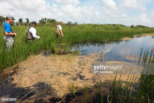 War veteran Chad Brown walks in a river during a training with Soul River group at the Arthur R Marshall Loxahatchee National Wildlife Refugee in...