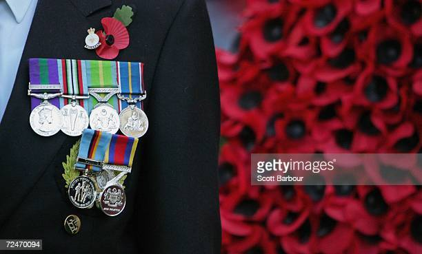 A war veteran stands with his medals on display during the opening of the Field of Remembrance at Westminster Abbey on November 9 2006 in London...