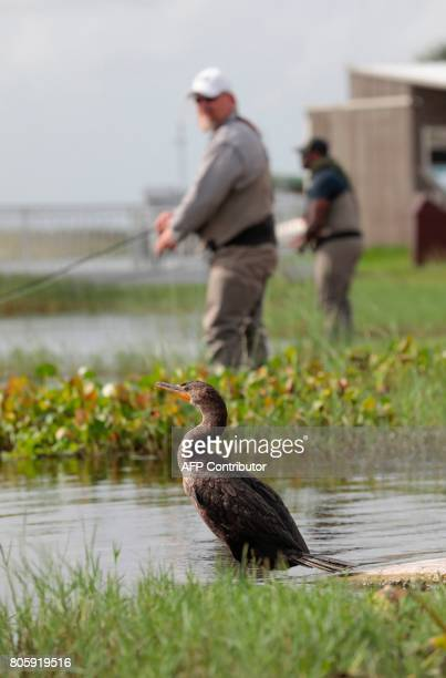 War veterans Terry Edelman and Chad Brown cast lines while relaxing at the Arthur R Marshall Loxahatchee National Wildlife Refugee in Boynton Beach...