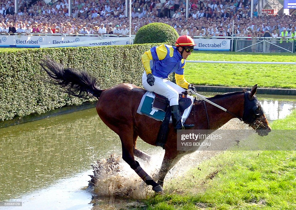 Jockey Xavier Hondier on his mount French horse Mur des Garennes jumps the river on his way to win the 'Grote Steeple Chase van Vlaanderen' horse...