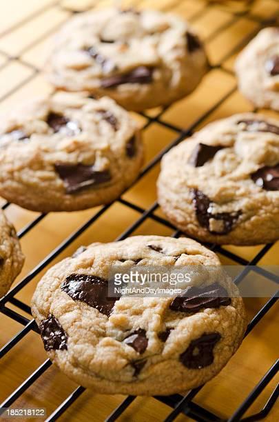 Blocco biscotti al cioccolato caldi