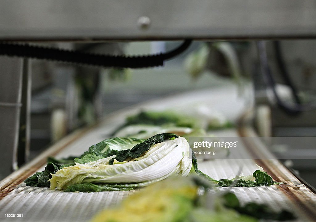 Washed cabbages move along a conveyor belt on the production line at the Gamchilbaegi Co. kimchi factory in Gwangju, South Korea, on Tuesday, Sept. 10, 2013. Gross domestic product rose 1.1 percent in the second quarter from the preceding three months, the most in more than two years, central bank data showed Sept. 5. Photographer: SeongJoon Cho/Bloomberg via Getty Images