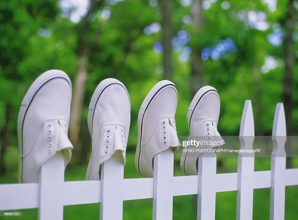 Washed sneakers being dried : Stock Photo