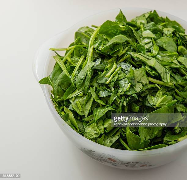 Washed Spinach in kitchen bowl.