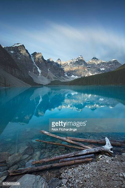 Washed up logs on the shore of Moraine Lake, banff National park, Alberta, Canada