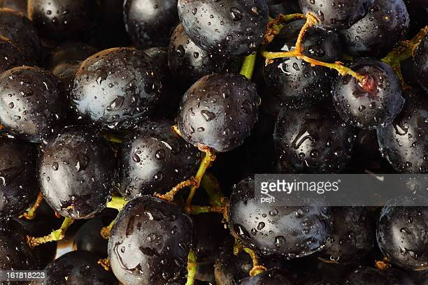 Washed vine grapes with water drops