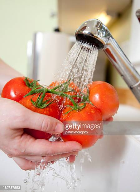 洗浄を含め、トマト