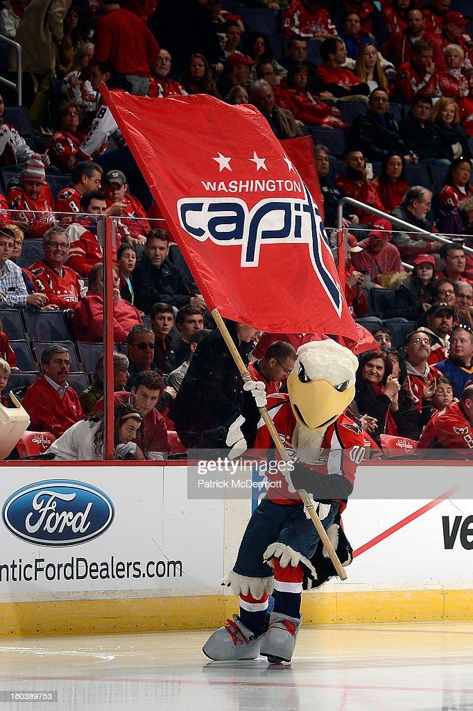Washington Capitals mascot Slapshot celebrates prior to the start of an NHL hockey game betweeen Buffalo Sabres and Washington Capitals at Verizon Center on January 27, 2013 in Washington, DC.