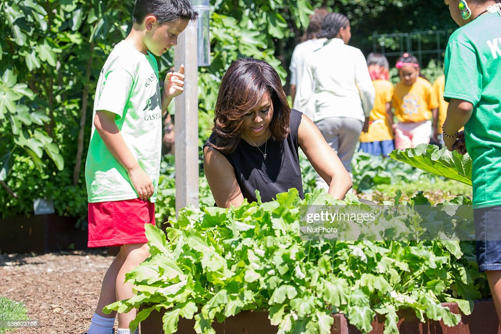 Michelle Obama And Students Harvest White House Kitchen Garden Getty Images
