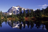 USA Washington Heather Meadows Mt Shuksan Reflected In Lake
