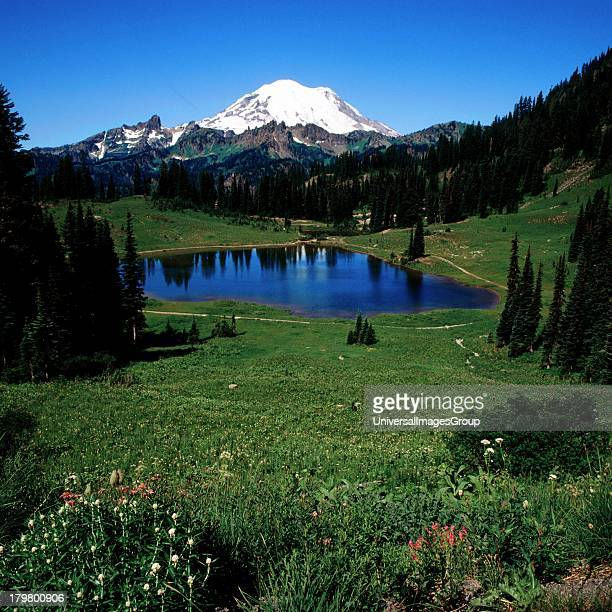Washington Mount Rainier from Tipso Lake Mount Rainier National Park