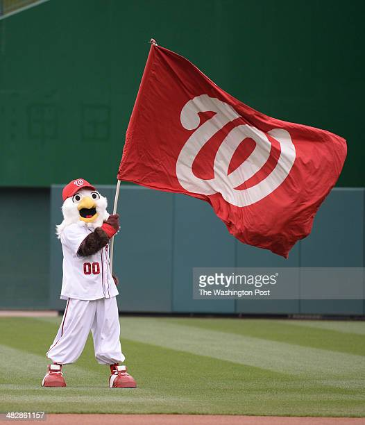 Washington Nationals mascot Screech waves the flag during pre game ceremonies prior to action against the Atlanta Braves on April 4 2014 in...
