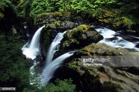 USA Washington Olympic National Park Sol Duc Falls