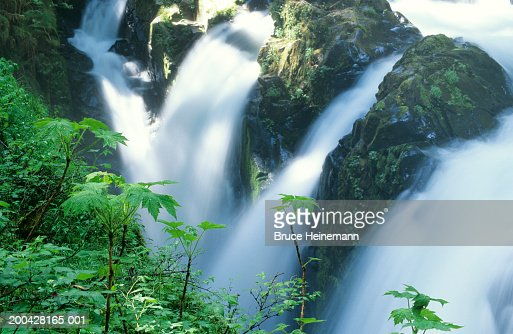 USA, Washington, Olympic National Park, Sol Duc Falls, spring