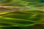 The palouse area is a major agricultural area, primarily producing wheat and legumes. The picturesque loess hills of the the Palouse Prairie can be viewed from Steptoe Butte Park.The palouse area is a