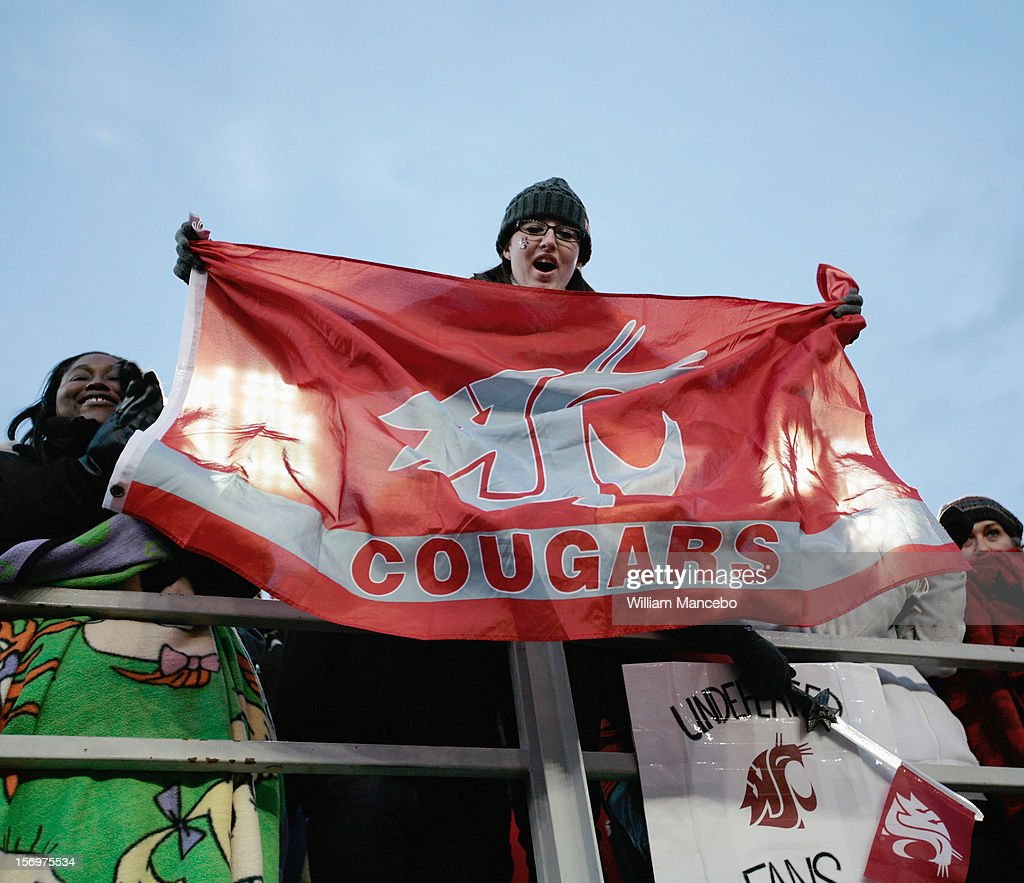 A Washington State Cougars fan holds a Cougars flag during the Apple Cup game between the Washington Huskies and the Washington State Cougars at Martin Stadium on November 23, 2012 in Pullman, Washington.