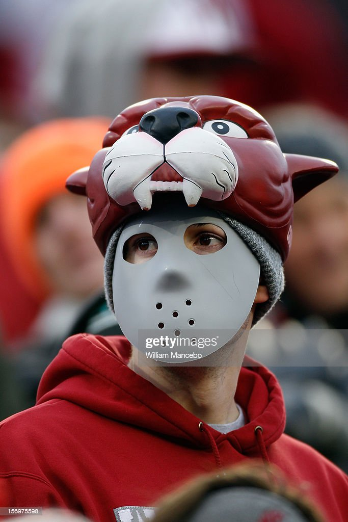 A Washington State Cougars fan wearing a mask and Cougars headdress during the game between the Washington Huskies and the Washington State Cougars at Martin Stadium on November 23, 2012 in Pullman, Washington.