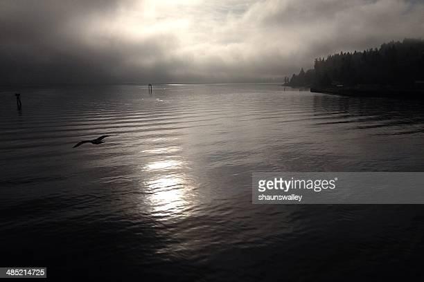USA, Washington State, Kitsap County, Bainbridge Island, Salish Sea. Bainbridge Island, Peaceful waters of the Puget Sound