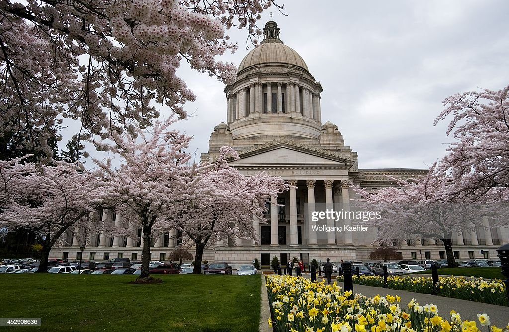 USA Washington State Olympia State Capitol Building With Spring Flowers