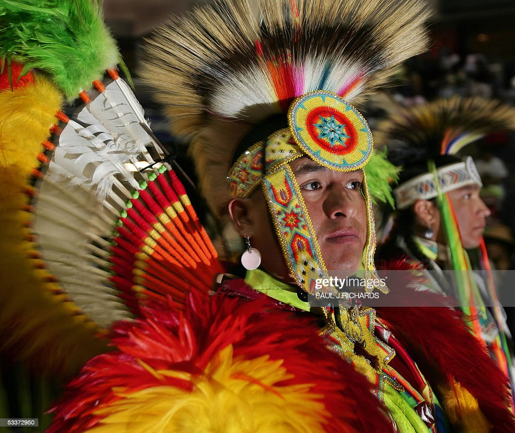 all about american natives and their American indians and alaska natives are unique among american minorities in their historical and current  american indians and alaska natives represent an.
