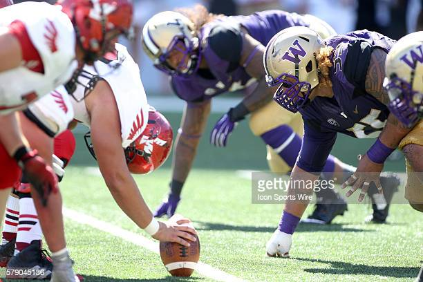 Washington's Defensive lineman Danny Shelton gets set in a three point stance at the line of scrimmage against Eastern Washington Washington defeated...