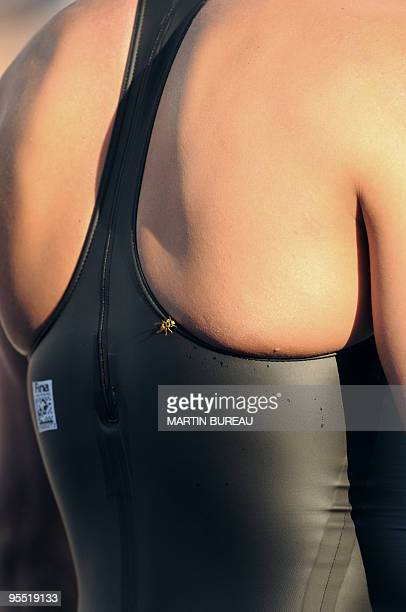 A wasp is seen on a swimsuit before the men's 50m butterfly final on July 27 2009 at the FINA World Swimming Championships in Rome AFP PHOTO / MARTIN...