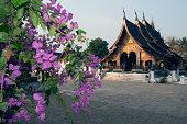 Wat Xieng Thong, sim
