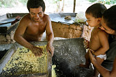 Watched by his wife and son a villager makes farinha a staple Brazilian food made from locally harvested manioc which he will sell to support his...