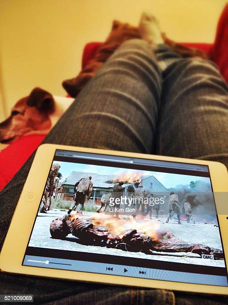Watching The Walking Dead Season 5 Episode 1 on mini iPad with dog on the sofa in a cozy living room