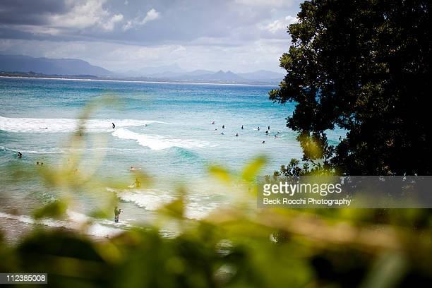 Wategoes Beach through the Tree