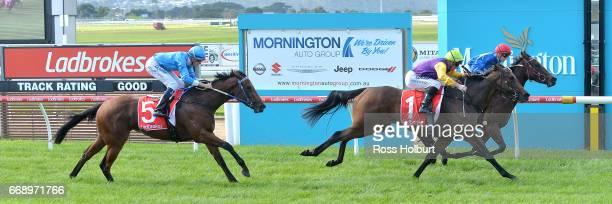 Watego's Beach ridden by Beau Mertens wins the Mornington Auto Group Plate at Mornington Racecourse on April 16 2017 in Mornington Australia