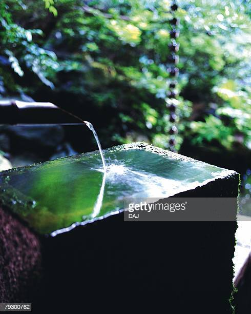 Water basin in Japanese garden, Japan, high angle view, differential focus