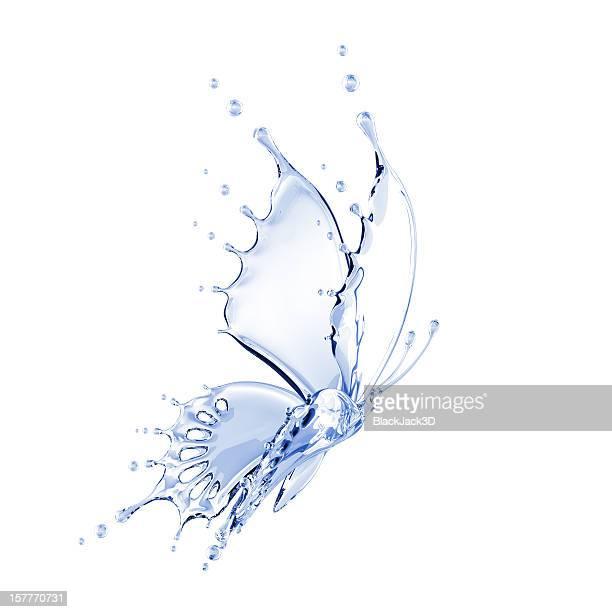 Borboleta de água