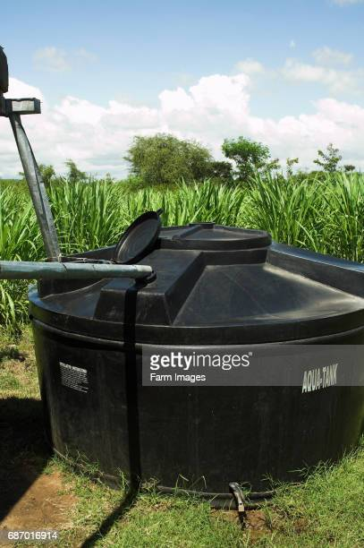Water collection tank connected to guttering of building next to field of crops on farm Kenya Africa
