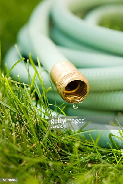 Water Dripping From Garden Hose