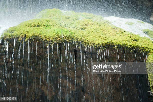 Water dripping over edge of moss covered rock