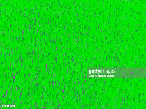 Water drops of many colors on a green blackground