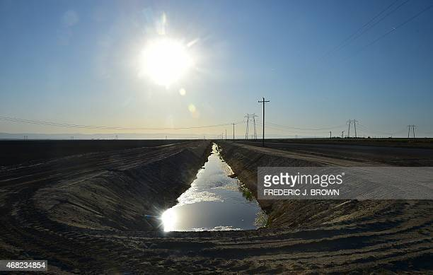 Water flows along the aqueduct near fields of crops beneath the sweltering sun on March 29 2015 in Kern County California which became the nation's...