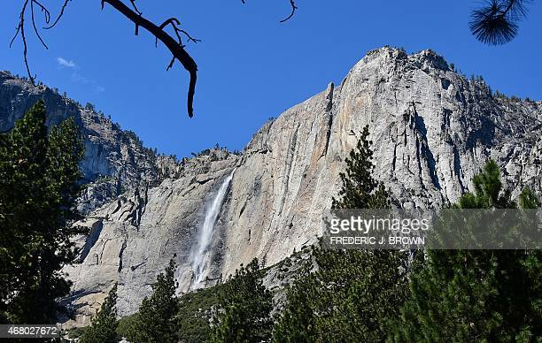 Water flows down Yosemite Falls the highest waterfall in North America in the Sierra Nevada mountain range at Yosemite National Park on March 25 2015...