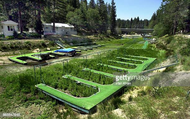 Water has receded leaving some boats stuck and weed grows around boat slips at Bluejay Bay in Lake Arrowhead The lake is nearly 13 feet below normal...