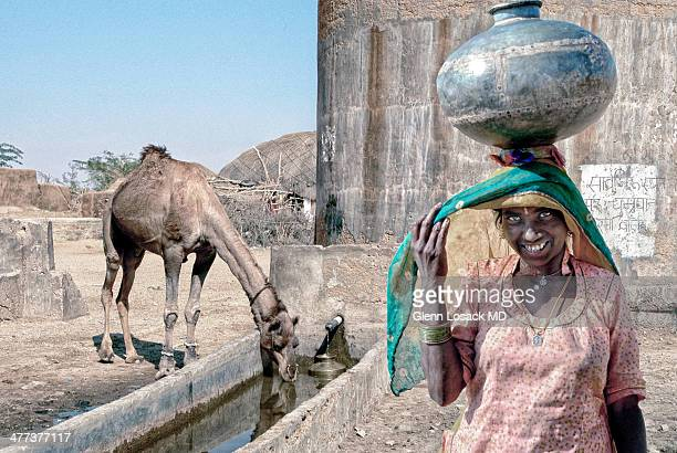 CONTENT] Water hole Rajasthan near Jaisalmer India That desert woman seen with jug of water on her head smiling Camel drinking from water hole in the...