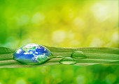 Earth in water drop reflection on green grass with soft bright nature blurred background, Earth and Environmental concept , Elements of this image furnished by NASA