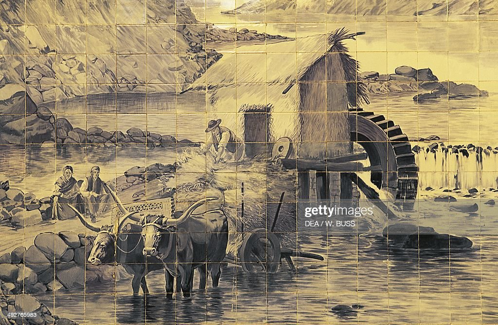Oxen pulling a wagon with a mill in the background
