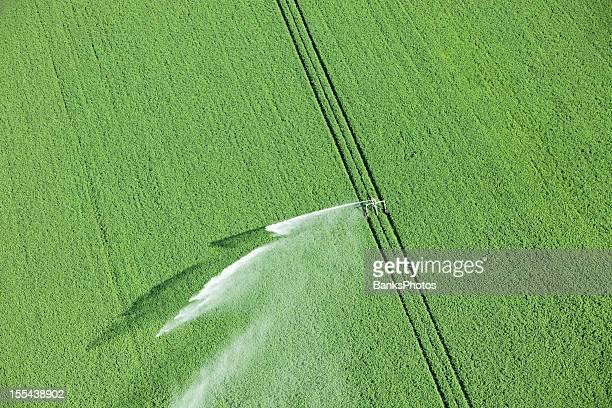 Bobine système d'Irrigation d'eau dans le champ de la ferme pulvérisateur
