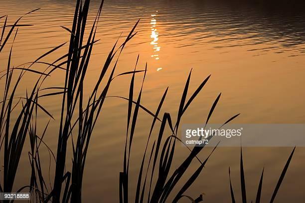 Wasser spiegelt Orange Sonnenuntergang