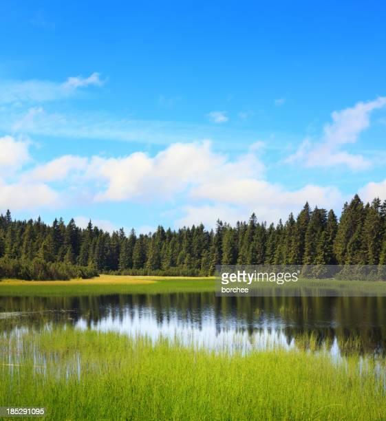 Wasser-Reservoir