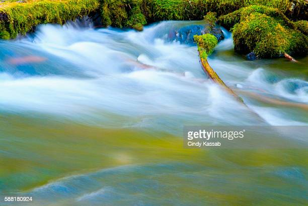 Water Rushing Over Mossy Rocks